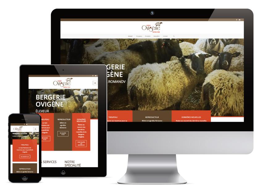 Site Internet Bergerie Ovigène